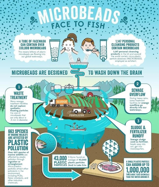 5gyres microbeads infographic
